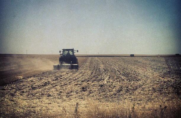 Campos de Castilla #tierras #trigo #cebada #verano #sol #sun – Instagram