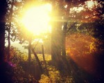 Atardecer en Montegrande #Abornikano #Araba #eguzkia #sun #sol – Instagram