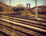 Edozein bidea hartuta ere, zoragarria trenez bidaiatzea #tren #vías #trenbidea #paisaia – Instagram