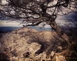 Escapando del viento #Belatxikieta #Artaun #Dima #12hilabete12mendi #mendizaleak #mountain – Instagram