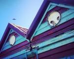 Edificios que sonríen a los pájaros #edificiosquecobranvida #caseta #playa #hondartza #beach #LaArena #Muskiz #AbantoZierbena #cielo #pájaro #sky #hegaztia #arkitektura #architecture #sonrisa #irrifartsu #begirada #eraikuntza – Instagram
