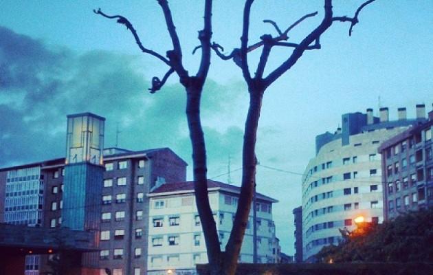 Manecillas de madera que abrazan el tiempo #brazos #ramas #besoak #reloj #erloju #clock #herrikoplaza #Barakaldo #zuhaitza #árbol #tree #denbora #tiempo #Ayuntamiento #udaletxea #enborra #edificios #casas #etxeak #erainkuntzak #manecillas #hora – Instagram