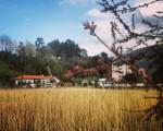Humedal camino a la playa #Pobeña #Muskiz #Bizkaia #humedal #agua #ria #cielo #primavera #playa – Instagram