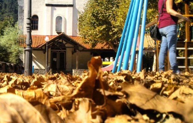 #Otoño en #ElRegato #udazkena #hojas #hostoak #hojasdecas #ocres – Instagram