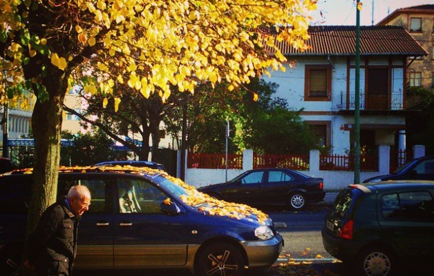 #Caminando hacia el #invierno. #vejez #paseo #andar #otoño #hojassecas #hojarasca #ocres #amarillos #hojascaidas #árbol #casaunifamiliar #avenida #Miranda #SanEloy #Barakaldo #calle #coches #terceraedad #agurea #bideaeginez #udazkena #negua #horia #hostoak #hostoeroriak #horiak #zuhaitza #oinez – Instagram