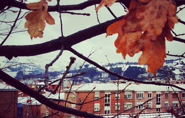 Hostoek neguari aurrera egiten #elurra #negua #teilatuak #tejados #haritza #roble #hojas #nieve #hostoak #ramas #invierno #edificios #eraikuntzak #ventanas #leihoak #Barakaldonevado #Barakaldoelurtuta #Barakaldo  #elurramaramara – Instagram