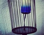 Vela que no vuelaprenderse quiera,encerrada anheladesacerse cera,libertad candelala muerte espera.#poesia #versos #vela #cera #candela #jaula #libertad #muerte #libre #volar #luz – Instagram