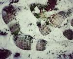 #Huellas negras sobre fondo #blanco #urratsak #elurra #negua #hotza #izotza #nieve #frío #invierno #hielo #zuria #Barakaldonevado #Barakaldoelurtuta #Barakaldo #elurramaramara – Instagram