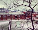 Negua zurigorriz #elurra #negua #teilatuak #tejados #zuhaitza #árbol  #nieve #ramas #invierno #edificios #eraikuntzak #ventanas #leihoak #blancoyrojo #Barakaldonevado #Barakaldoelurtuta #Barakaldo  #elurramaramara – Instagram