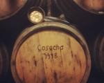 #cosecha1978 #lamejorcosecha #vino #ardoa #barricas #barrikak #madera #egurra #cazo #bodegasIrache #Nafarroa #Navarra – Instagram