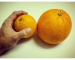 #Naranja tamaño #Valencia!!!#XXL #peroestoquees #impresionante #alucinante – Instagram