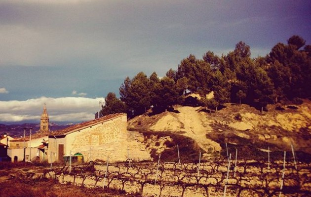#Cuzcurrita #viñedos #LaRioja #Sol #tierras – Instagram