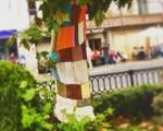 Los #árboles de #Karrantza se preparan para el duro #invierno#Neguabertanda #winteriscoming#kinitting #yardbombing #arteurbano #urbanarts #lana #vestir @igerseuskadi – Instagram