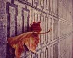 #Udazkena dantzan#hostoa #hoja #ocres #otoño #baldosa #Barakaldo #perspectiva #plasticidad@igerseuskadi – Instagram