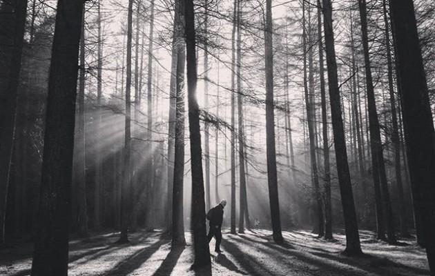 #Argiizpiak #Saldropo n #Zeanuri #Dima #Ubidea #Gorbeialdea #Bizkaiamaite@igerseuskadi @instagram @basurdeeditions #itzalak #argijokoak #basoa #bosque #misterio#lucesysombras #zuribeltza #blancoynegro #blacknwhite – Instagram