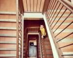 #Rincones de la #vieja #Iruña#escaleras #eskailerak #zaharra #txokoederrak – Instagram