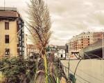 #Plantasinvasoras en plena #ciudad #Barakaldo #naturarenindarra #estacionrenfe #tren #BarakaldoBilbao @igerseuskadi @igersbilbao @instagram – Instagram