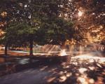 Esto es lo que pasa cuando te cruzas con los #jardineros #regando y el #sol de frente#contrantes #lucesysombras #agua #Barakaldo #ElCarmen @igerseuskadi @igersbilbao @instagram – Instagram