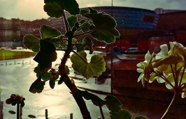 #oficinaconvistas #lanetik #behatokia #hiripaisaia #streetphotography #paisajesurbanos #orbela #winter @instagram @igerseuskadi @igersbilbao @euskal_herria_iruditan @athleticclub #sanmamesbarria #lorea #negua #bilbao – Instagram