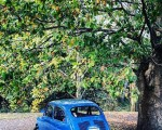 #seiscientos #azul #600 #cochesantiguos #vintage #arbol #sombra @igerseuskadi @instagrames @igersbilbao @igersbizkaia – Instagram